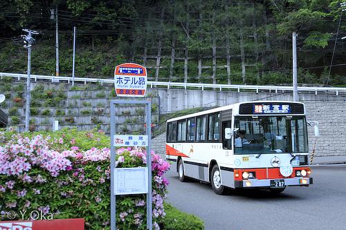 昴の郷のツツジとバス