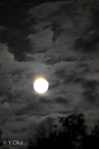 十津川村の月