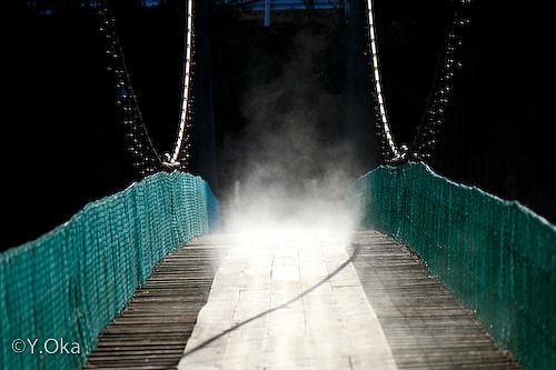 猿飼吊り橋