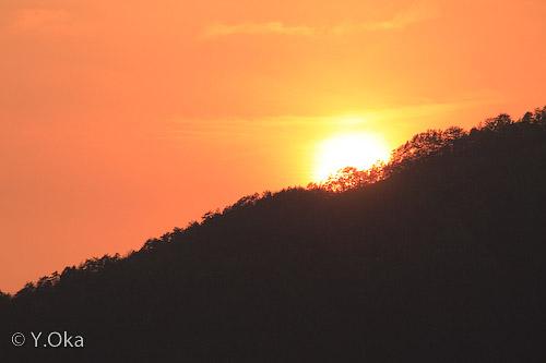 果無の夕陽