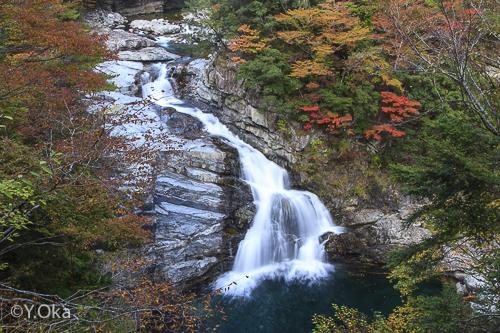 紅葉の大泰の滝