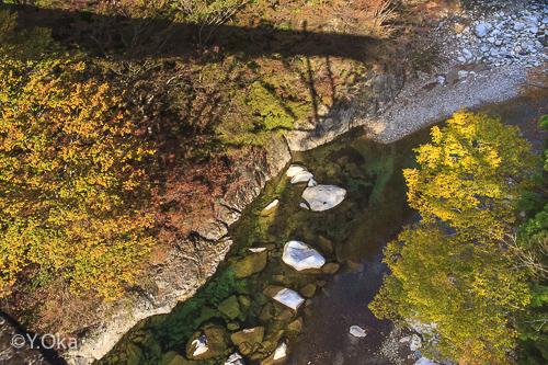 白谷渓谷紅葉