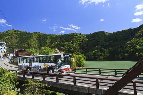 奈良交通八木新宮特急バス