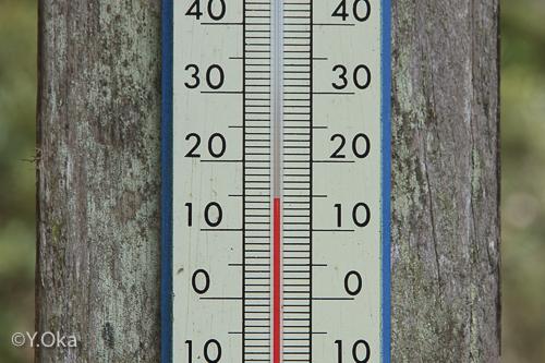 玉置神社気温