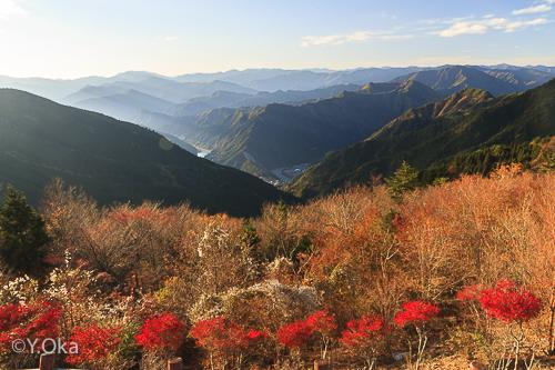 玉置山展望台紅葉