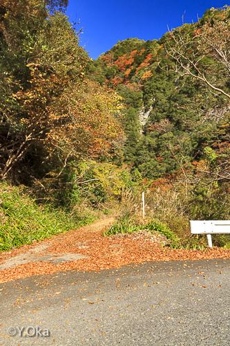 瀬野の滝までの道入り口