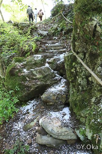 瀬野の滝道普請