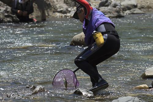 鮎友釣り体験