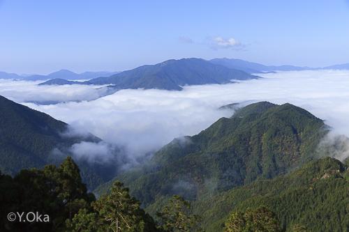 玉置山雲海