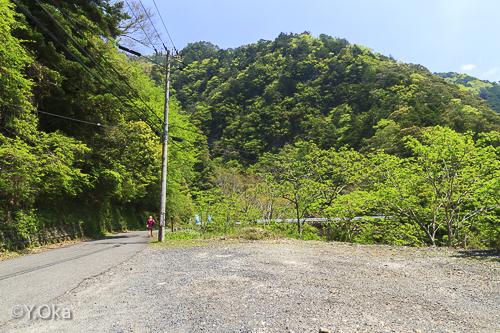 大野出合瀬野の滝