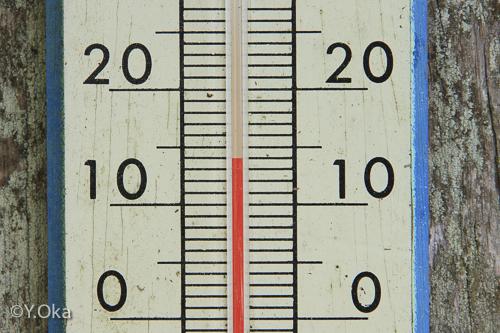 玉置神社温度