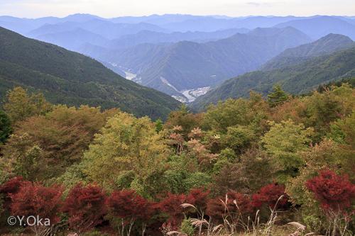 秋の玉置山