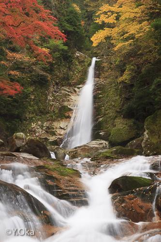笹の滝紅葉