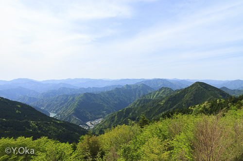 新緑の玉置山