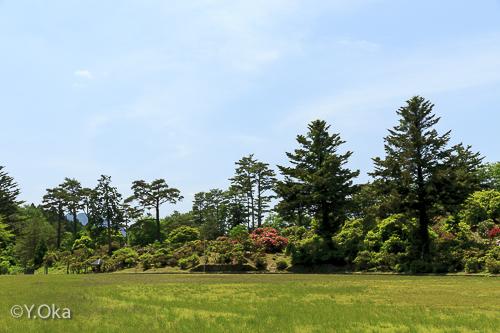 21世紀の森・紀伊半島森林植物公園