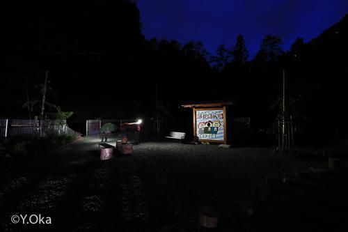 十津川ホタル