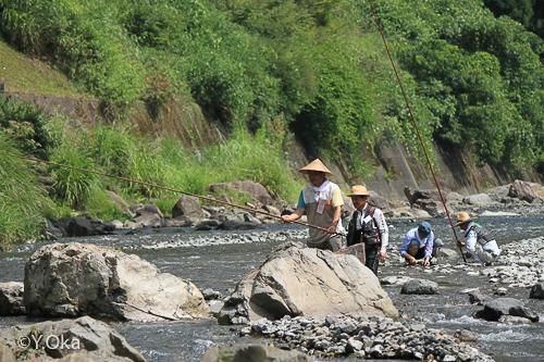 鮎釣り体験