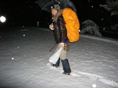 雪が降る道