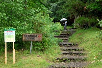 馬返からの登山道