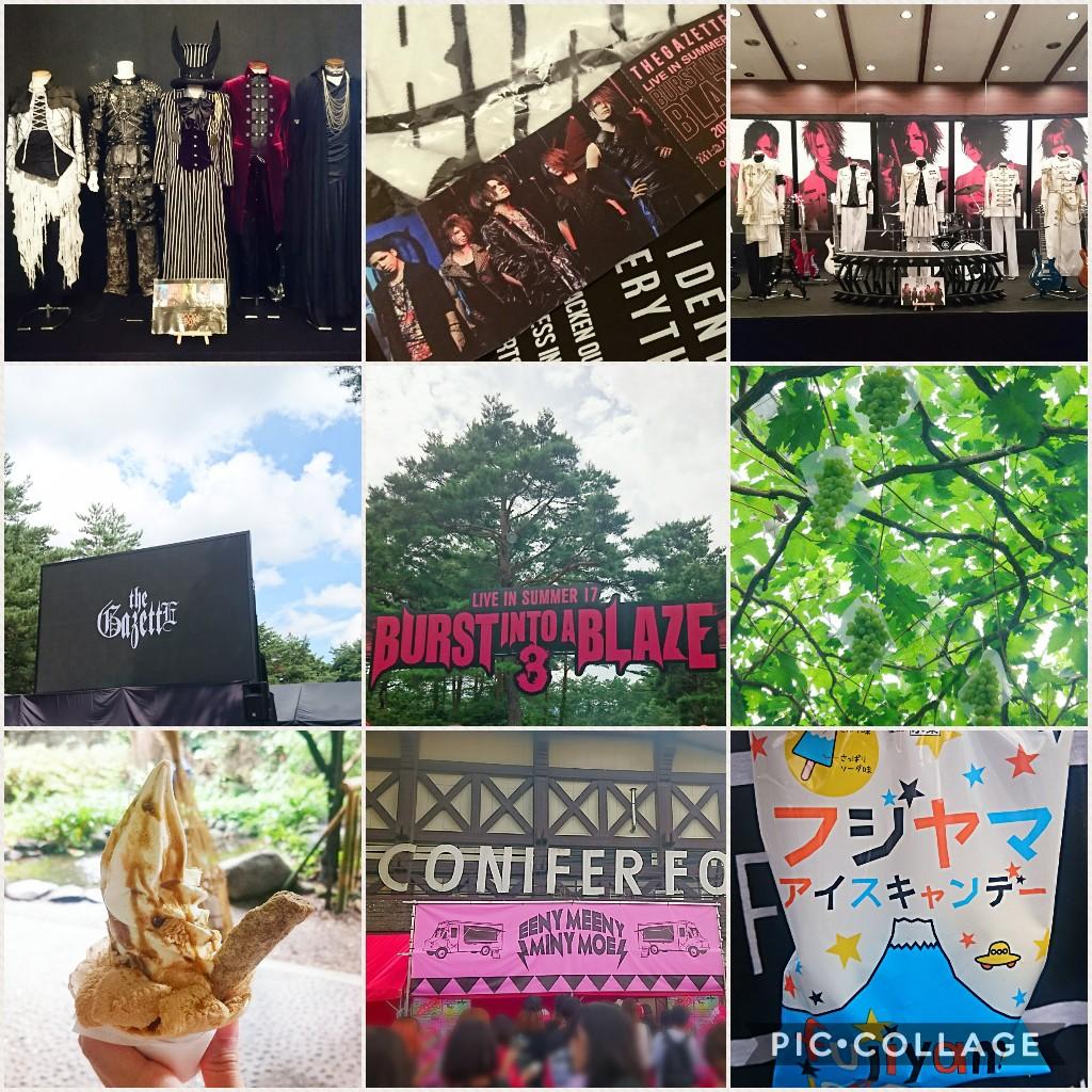 Collage 2017-08-2110_05_56.jpg