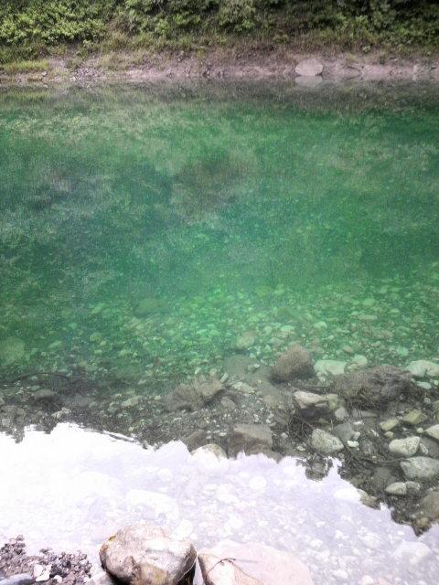 七川ダム! | ACTIVE FISHING RE...