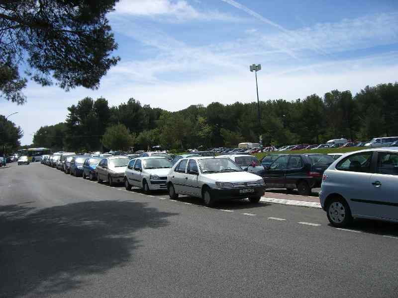 日曜の大学駐車場