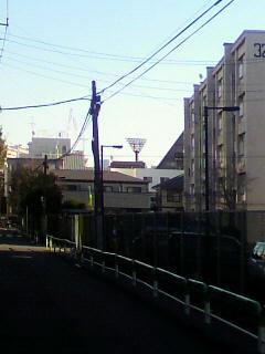 P1011018.jpg
