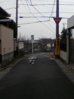 P1011073.jpg
