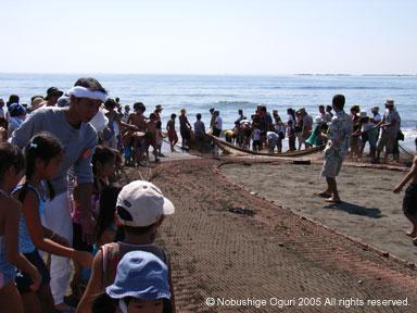 茅ヶ崎海岸の地引網