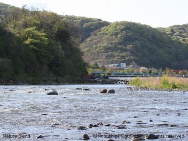 相模川の上流