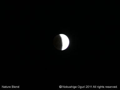 皆既月食22-38.jpg