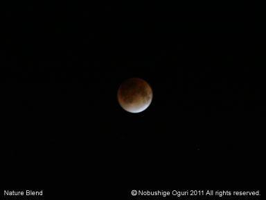 皆既月食23-19.jpg