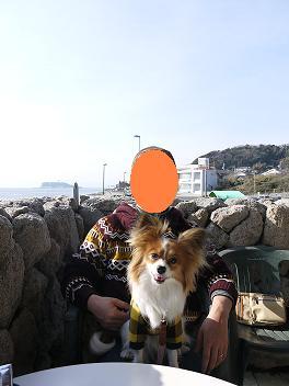 稲村ケ崎レストラン(じん).JPG