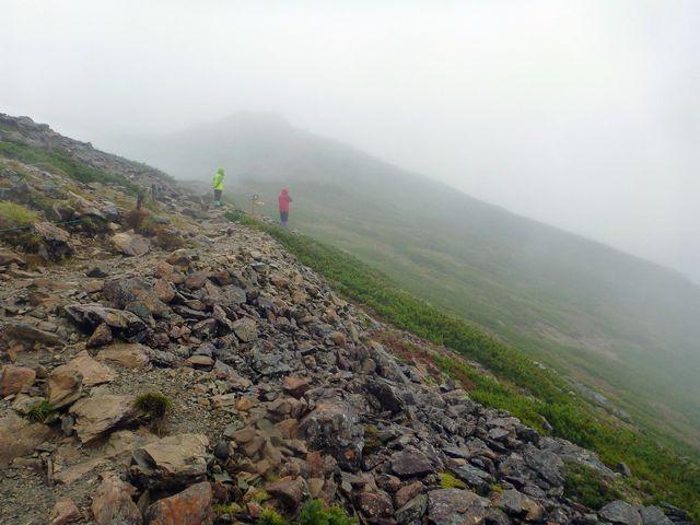 仙丈ヶ岳登山道