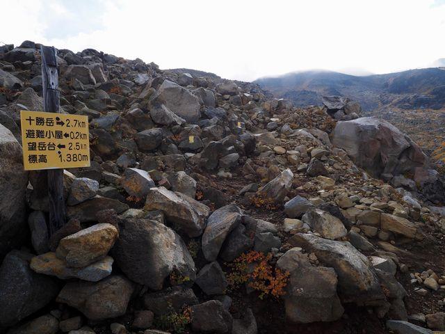 十勝岳登山道