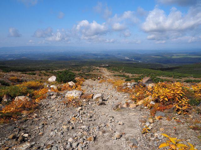 望岳台コース