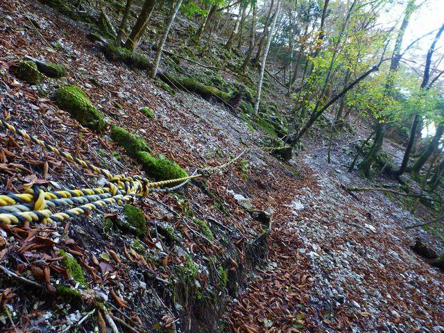 石立山登山道