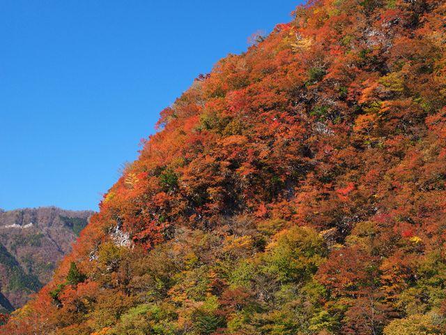 石立山紅葉