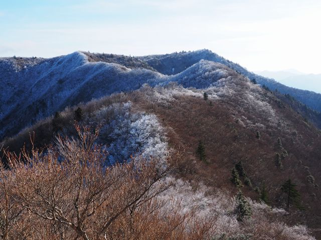 ハネヅル山