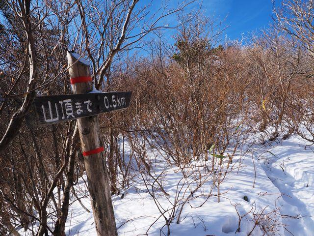 二ッ岳登山道
