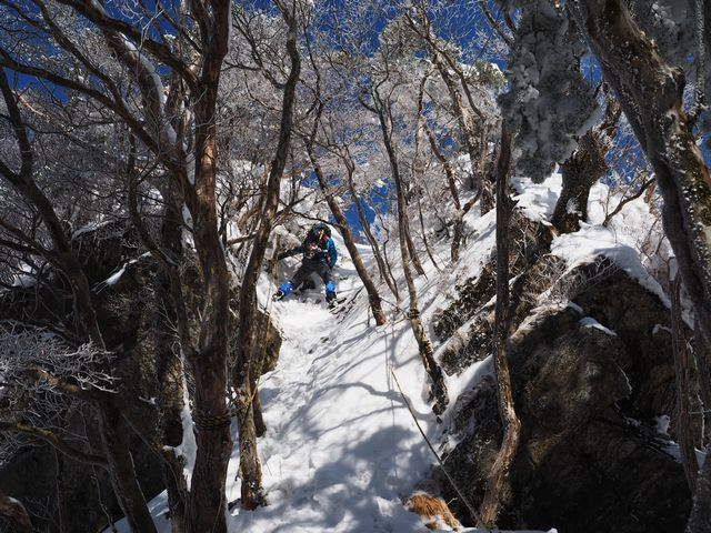 稜線分岐〜地蔵ノ頭