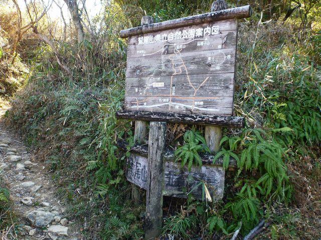 皿ヶ峰登山道