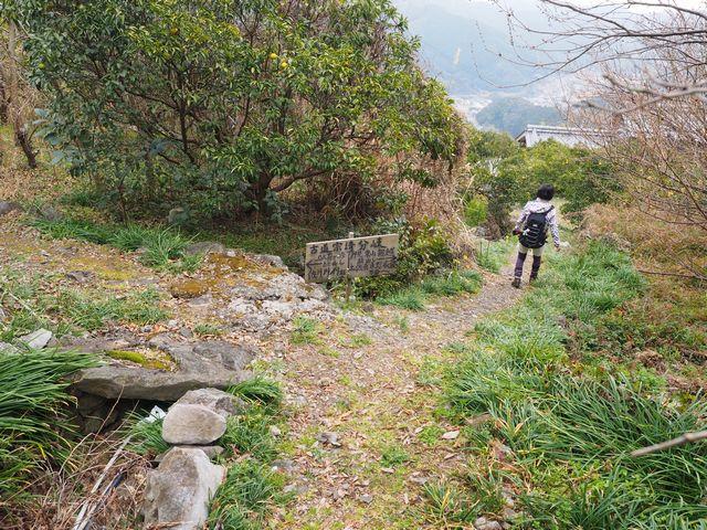 蟠蛇森登山道