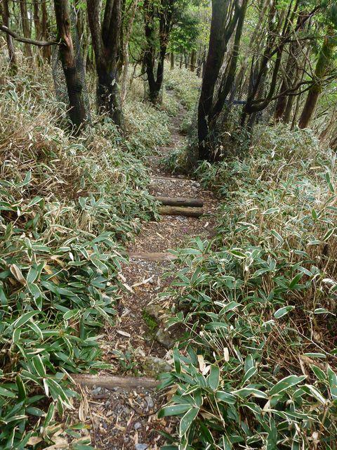 白髪山登山道