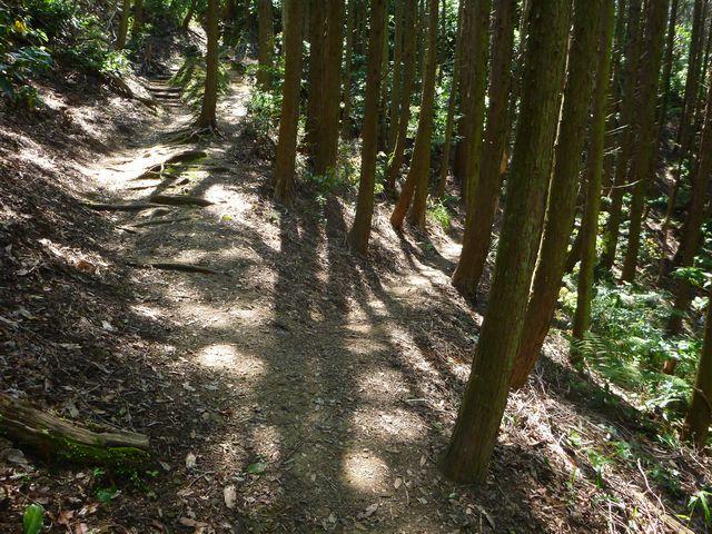 鷲尾山トラバース