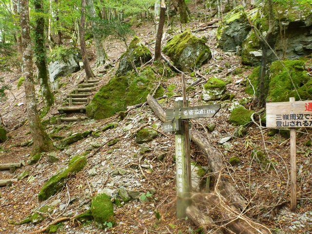 三嶺林道終点登山口