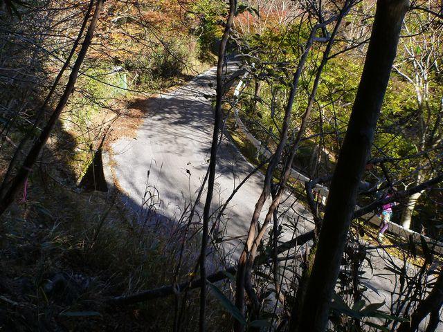 白髪池登山口
