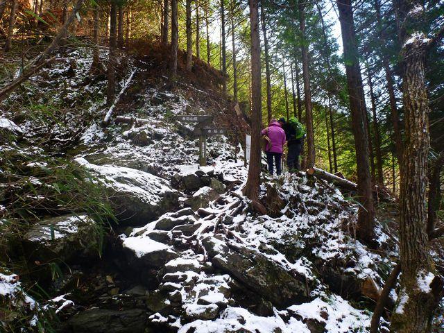 東赤石山登山道