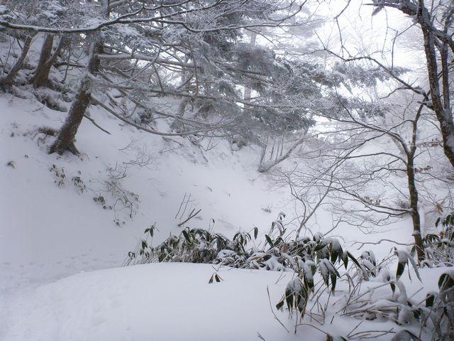 伊予富士登山道