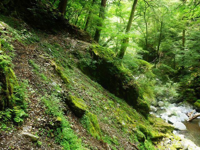 フスベオリ谷コース